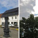 Busfahrt nach Luckau und zur Sielmannstiftung Wanninchen